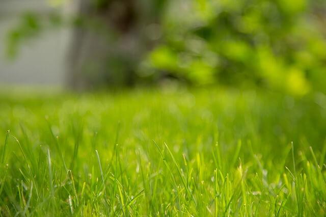 Gras ingezaaid op nieuw parkeerterrein